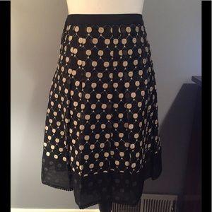 Ann Taylor Embroidered Polka Dot Skirt
